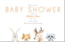 Baby Shower Invitations Announcements