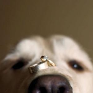 wed ring.jpg